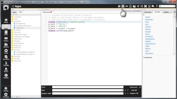 open_file_in_debugger